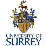 Surrey International Institute, DUFE